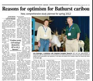 Bathurst Caribou News Article