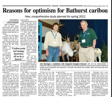 Bathurst Caribou News Article